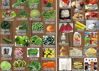 File photo of acidic and alkaline rich foods